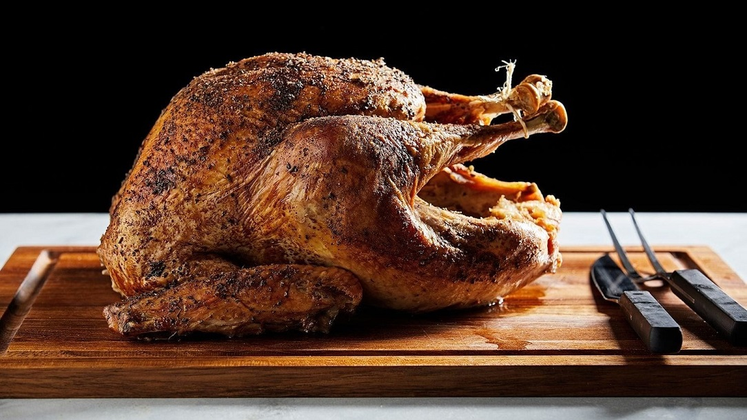 American turkey