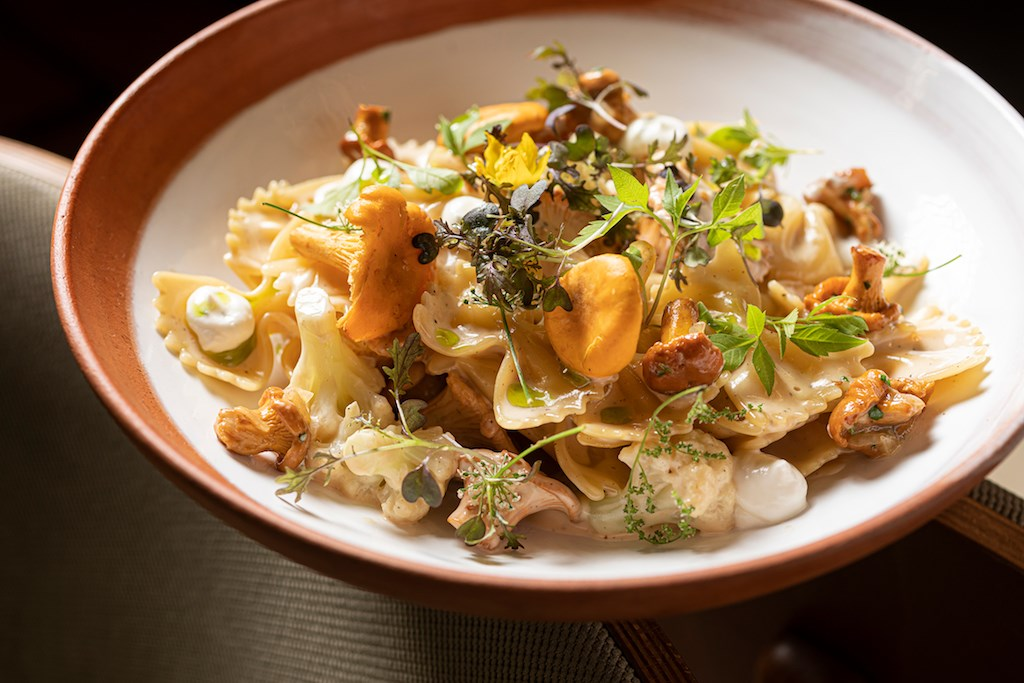 Farfalle pasta with chanterelles and cauliflower