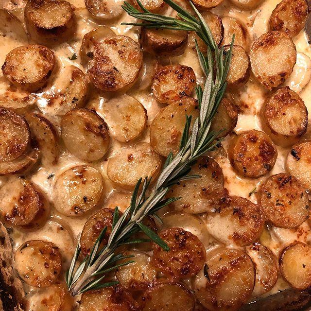 Cheesy potato gratin with rosemary