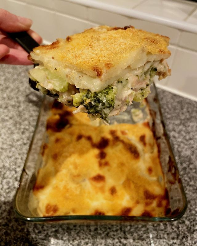 Salmon & Broccoli Bake